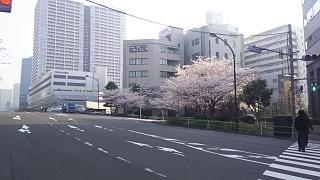 20180328朝の風景(その1)