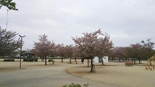 20180406高松へ(その13)