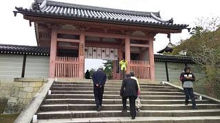 20180409仁和寺(その1)