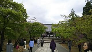 20180409仁和寺(その49)