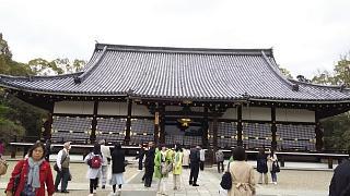20180409仁和寺(その50)
