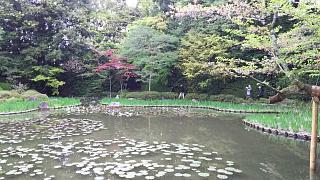 20180409平安神宮(その24)