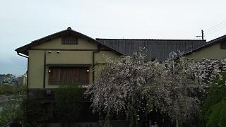 20180409京都街歩き(その27)