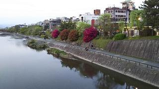 20180409京都街歩き(その40)
