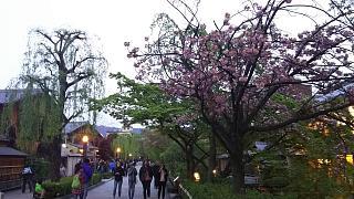 20180409京都街歩き(その48)