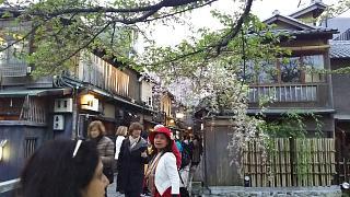 20180409京都街歩き(その53)
