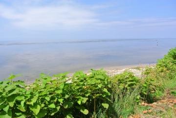 静かな宗谷の海