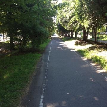 快適な自転車道