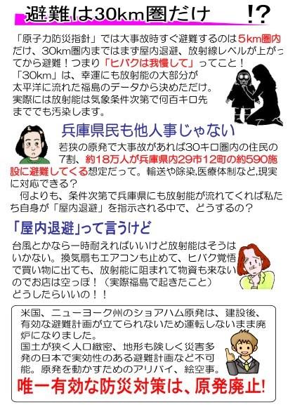 Vir2_P4.jpg