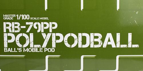 mg_polypod004.jpg