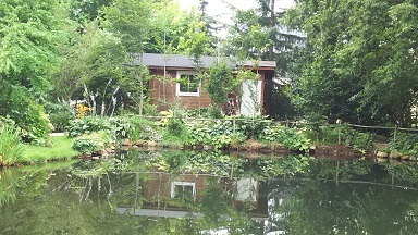 ガーデン内池