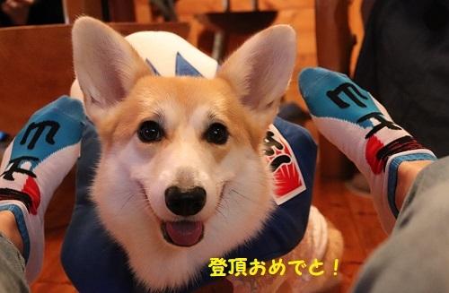 21富士山靴下