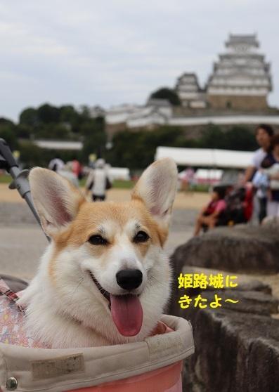 39姫路城