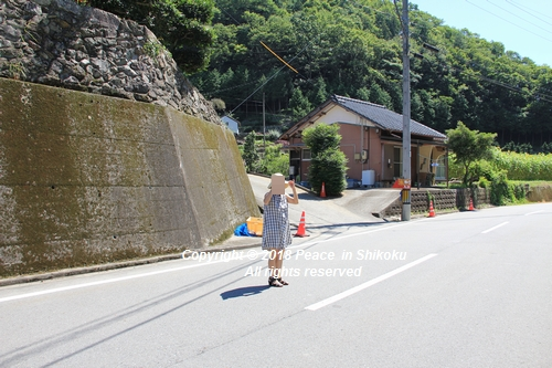 himawarimisato-07233070.jpg