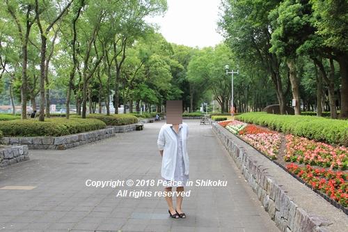 iasijasakaide-06181910.jpg