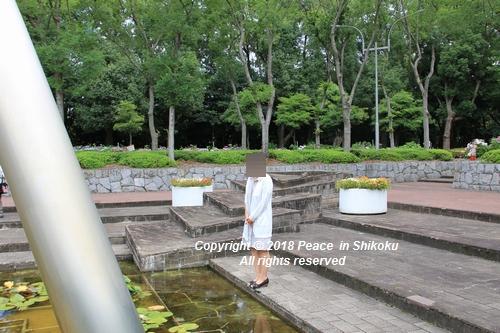 iasijasakaide-06181919.jpg