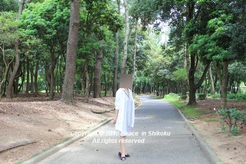 iasijasakaide-06182001.jpg