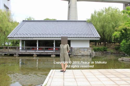 iasijasakaide-06182163.jpg
