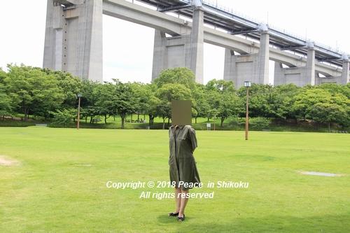 iasijasakaide-06182181.jpg