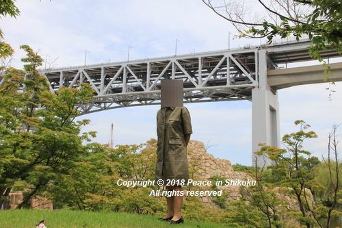 iasijasakaide-06182184.jpg