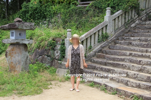 takasimahudou-07022672.jpg