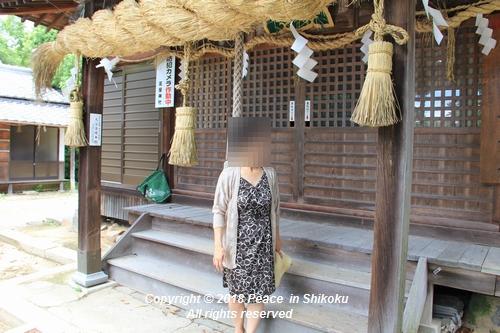takasimahudou-07022725.jpg