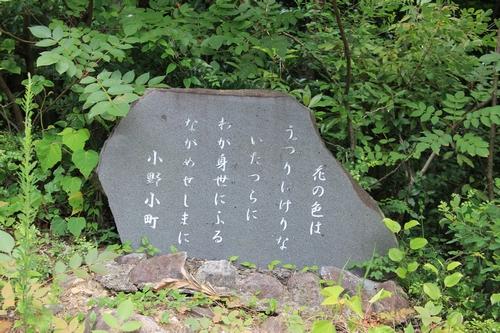 takasimahudou-07022761.jpg