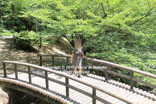 takasimahudou-07022936.jpg
