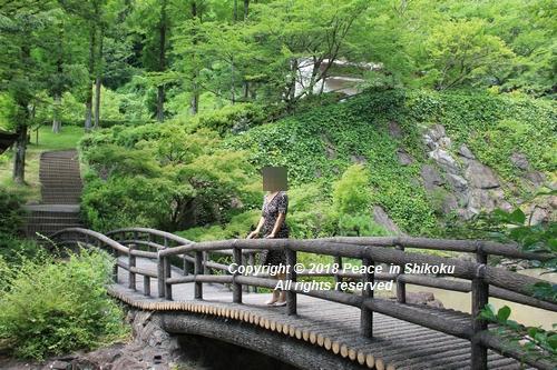 takasimahudou-07022959g.jpg