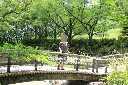 takasimahudou-07022967g.jpg