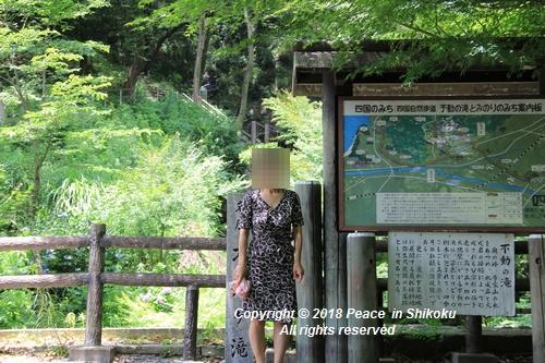 takasimahudou-07022977g.jpg