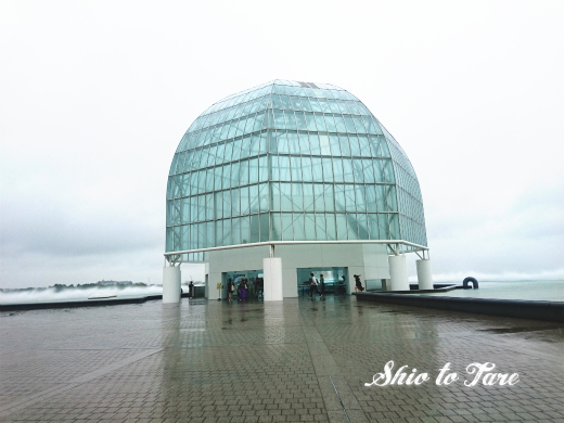 DSC_1499_20180921_葛西臨海水族園