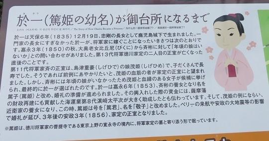 IMG_9442  篤姫