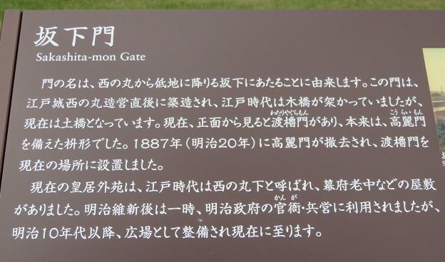 IMG_1208 坂下門