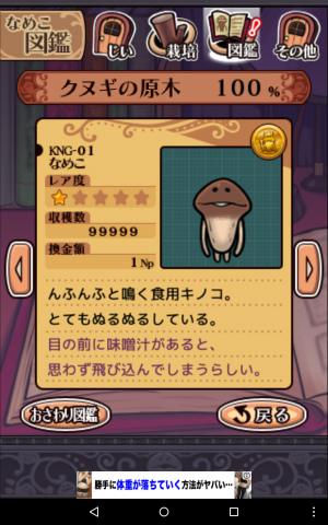 なめこ栽培_KNG-01