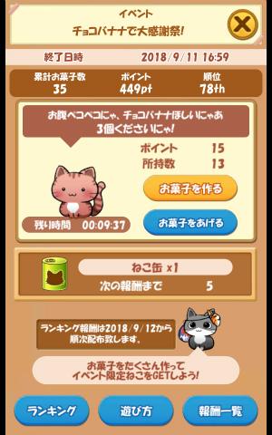 CAT ROOM_003