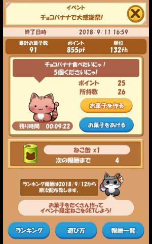 CAT ROOM_012