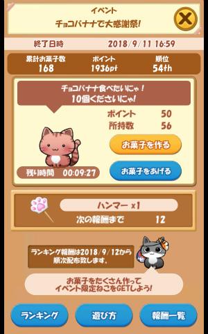 CAT ROOM_023