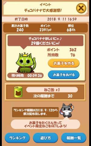 CAT ROOM_029