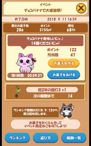 CAT ROOM_035