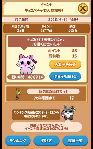 CAT ROOM_036