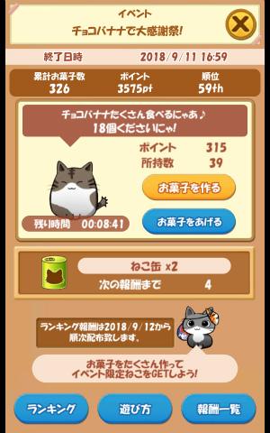 CAT ROOM_039
