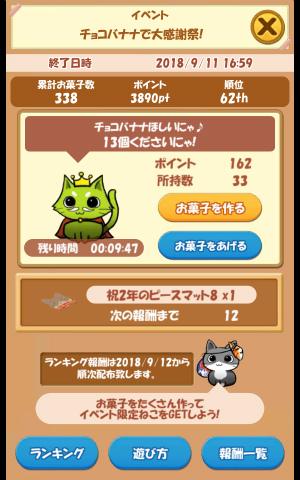 CAT ROOM_041