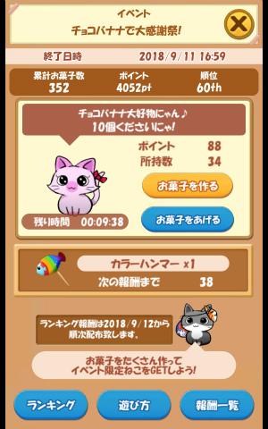 CAT ROOM_043