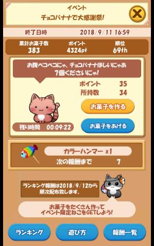 CAT ROOM_049