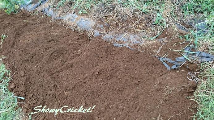 2018-08-12土壌改良 (9)