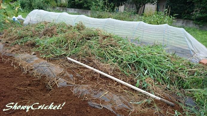 2018-08-12土壌改良 (11)