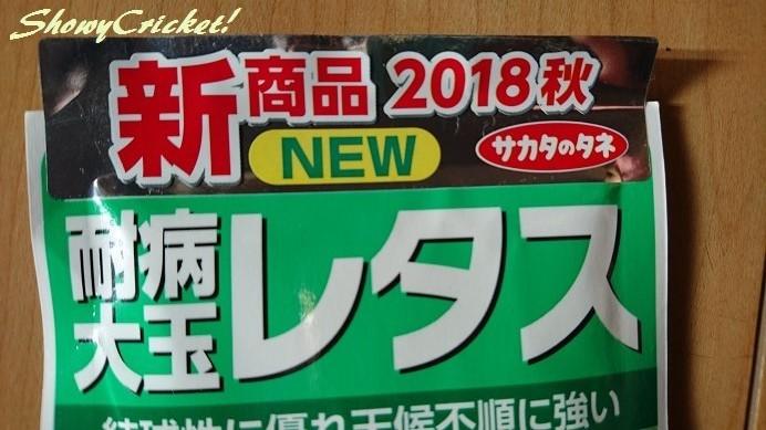 2018-09-05レタス (9)