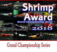 shrimpaward