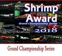 shrimpaward